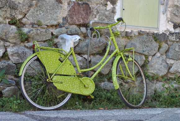 Green Flowered Bike
