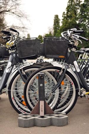 Free Bikes Stand