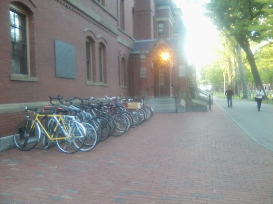 Harvard Yard Bike Rack