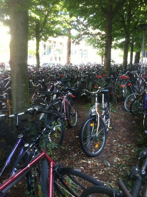 Bicycle Parking Area In Germany